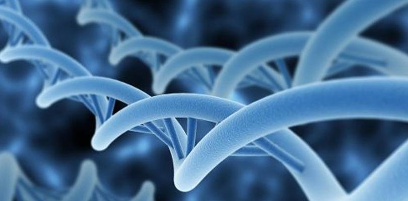 Modifica-tu-ADN-con-tus-pensamientos-esencias-para-el-alma-concha-suarez
