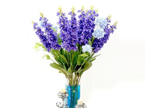 esencias-florales-esencias-para-el-alma-concha-suarez-3
